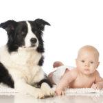 Дети и животные: совет врача